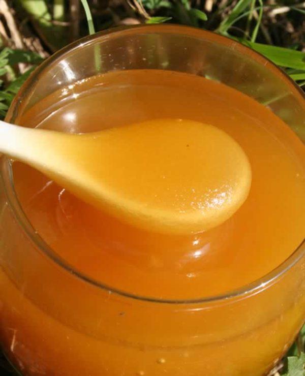 Боярышниковый мёд