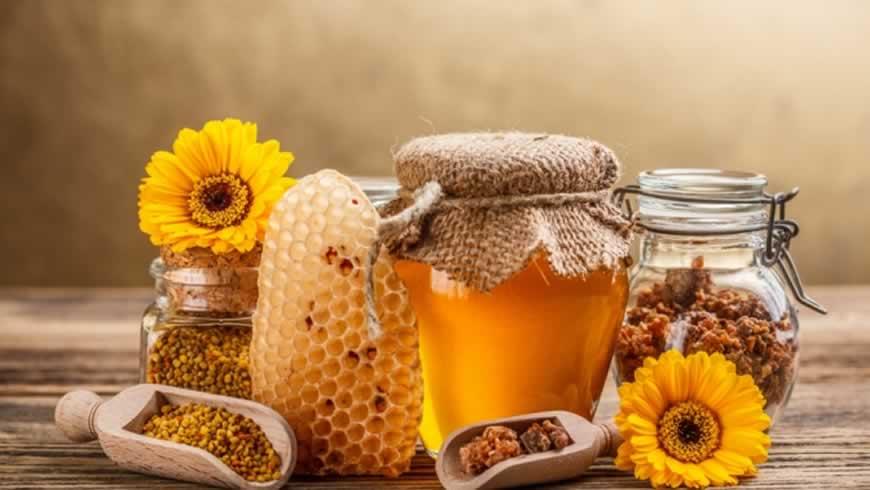 Майский мёд — первый и полезный