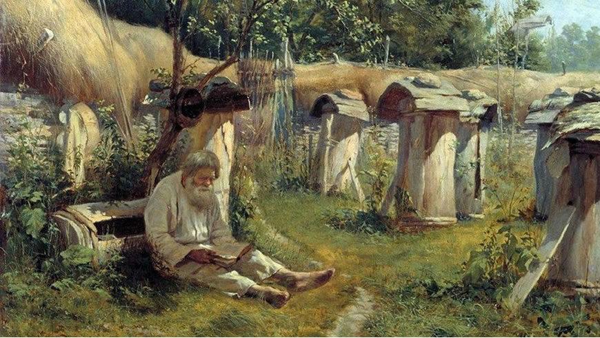 Бортьевое пчеловодство